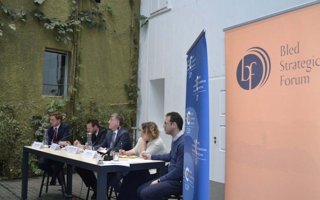 Round Table: Perspectives for the Western Balkans in the EU