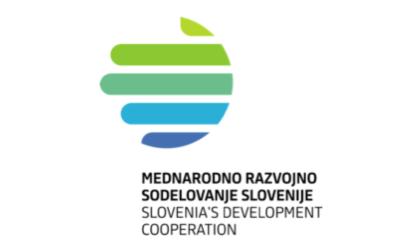 Professional Experience for Serbian Civil Servants