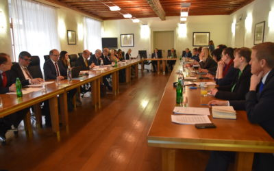 Razprava o prihodnosti EU: demokratična legitimnost EU in institucionalne spremembe